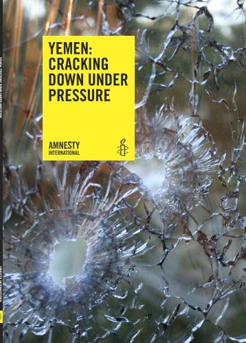 pressure groups amnesty international The reason for making a branch of amnesty international in turkey was to  expand  organizations, armed political groups, companies and other non-state  actors  activists take up human rights issues by mobilizing public pressure  through.