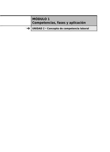 Concepto de competencia laboral