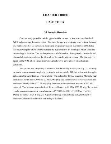 funniest essay analogies