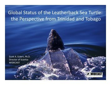 the Perspective from Trinidad and Tobago