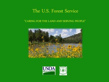 The U.S. Forest Service - Rights and Resources Initiative