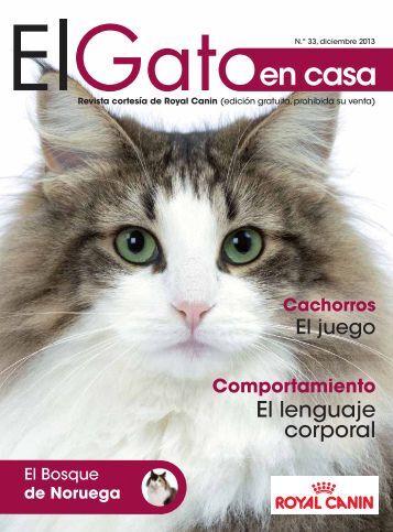 5 free magazines from vai3333 - El gato en casa ...