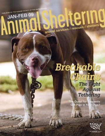 Reeling in the news Media - Mayor's Alliance for NYC's Animals
