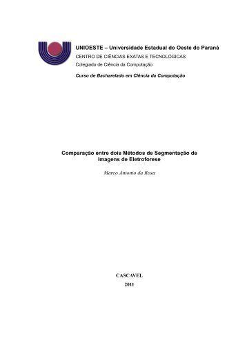 Comparação Entre Dois Métodos de Segmentação ... - INF-Unioeste