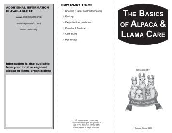 the basics of alpaca & llama care - Alpaca Llama Show Association