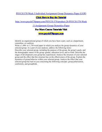 reflective group dynamics essay