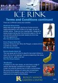 ICE RINK - Page 2
