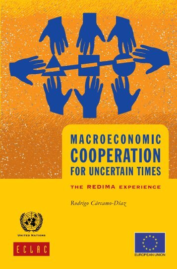 Macroeconomic cooperation for uncertain times: The REDIMA experience