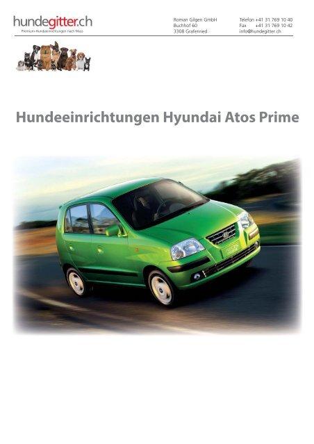 Hyundai_Atos_Prime_Hundeeinrichtungen