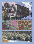 Gardener - Page 2