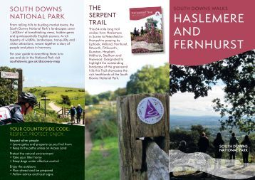 HASLEMERE AND FERNHURST
