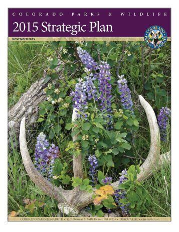 2015 Strategic Plan