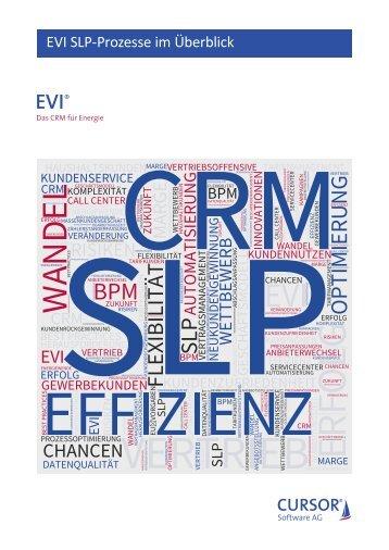 EVI SLP-Prozesse im Überblick