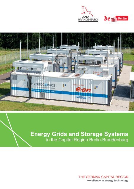 Energy Grids and Storage Systems in the Capital Region Berlin-Brandenburg