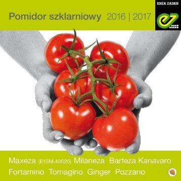 Pomidor 2016-2017