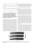 Phytoplankton patchiness and their role in the modelled productivity ... - Page 7