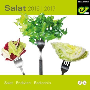 Salat 2016 | 2017