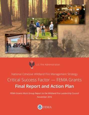 Critical Success Factor — FEMA Grants Final Report and Action Plan