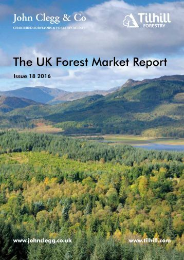 The UK Forest Market Report