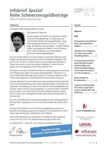 Infobrief Hohe Schmerzensgeldbeträge 1/2017