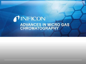 Hydrogen Sulfide in Natural Gas Matrix - Micro GC Fusion - INFICON