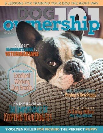 Dog Ownership 101 - January/February 2017