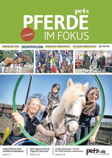 Pferde im Fokus