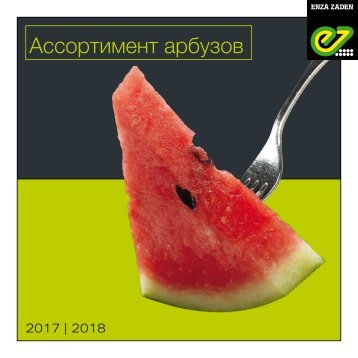 Watermelon Russia 2017-2018