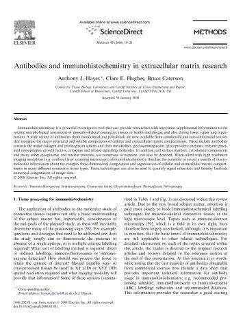 The matrix research paper