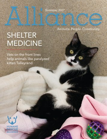 Alliance Magazine Summer 2017