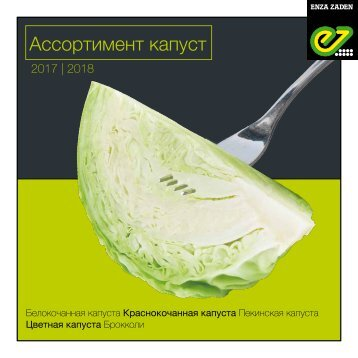 Cabbage Russia