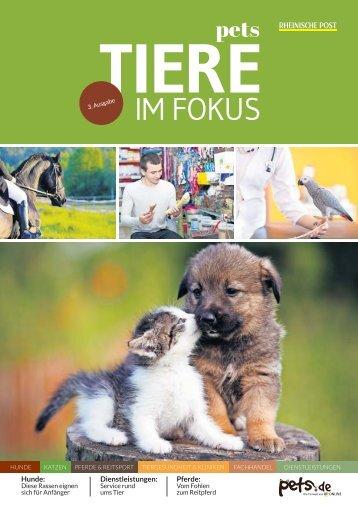 Tiere im Fokus  -05.09.2017-