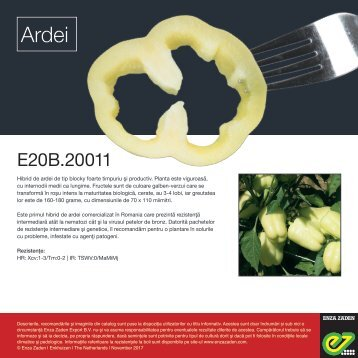 Leaflet E20B.20011 Romania 2017