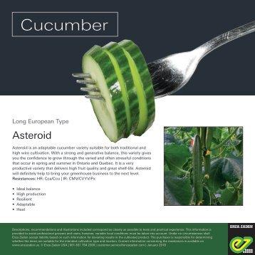Leaflet Cucumber Asteroid 2018