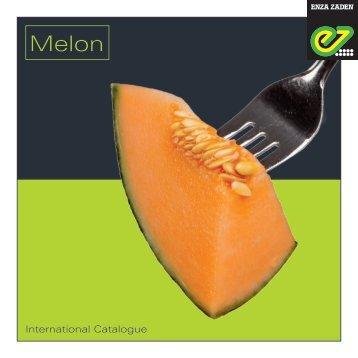 Melon 2018