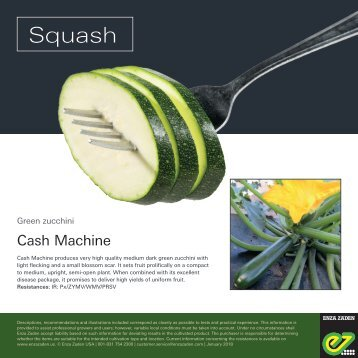 Leaflet Squash Cash Machine 2018
