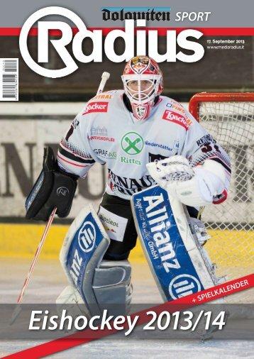 Radius Eishockey 13_14