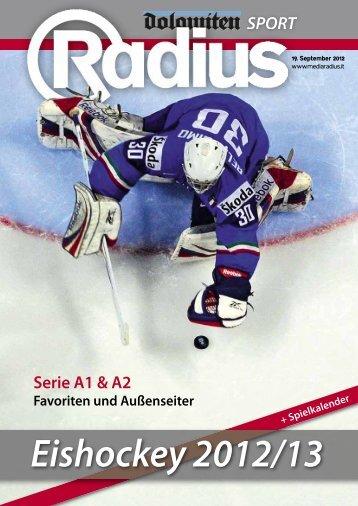 Radius Eishockey 12_13