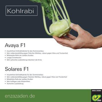 Leaflet Kohlrabi 2018
