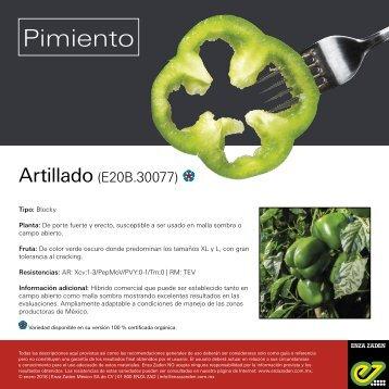 Leaflet Artillado 2018