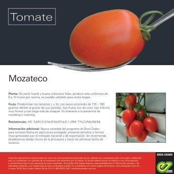 Leaflet Mozateco 2018