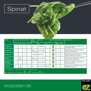Leaflet Spinat 2018