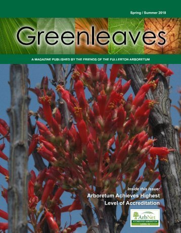 Greenleaves - Spring/Summer-2018