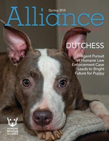 Alliance Magazine Spring 2018