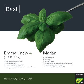 Leaflet Basil 2018