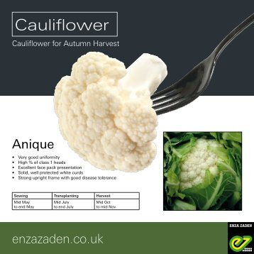 Leaflet Cauliflower Anique