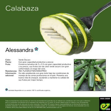 Leaflet Alessandra 2018
