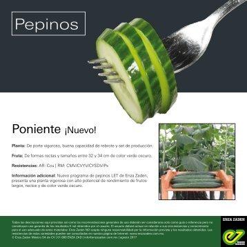 Leaflet Poniente 2018