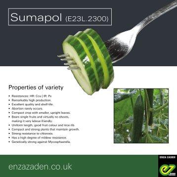 Leaflet Sumapol 2018