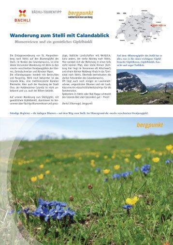 Tourentipp 05a.20118 - Wanderung zum Stelli mit Calandablick